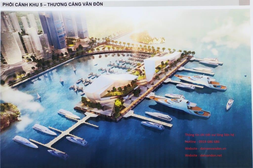 Cảng Ao Tiên Vân Đồn
